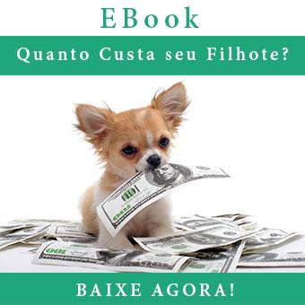 eBook Quanto Custa seu Filhote