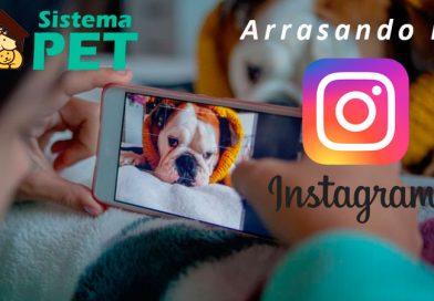 Instagram e o Criador