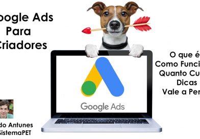 Google Ads para Criadores